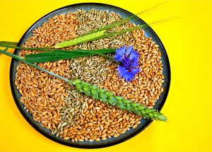 whole grains for vitamin B